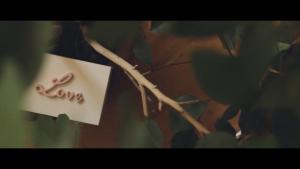 filmy ślubne dolny śląsk
